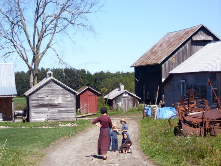 Amish_farm_morristown_new_york